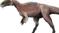 Se han descubierto tres esqueletos (un adulto y dos crías)en China del mayor dinosaurio con plumas, que vivió en el Cretácico inferior. Su nombre, Yutyrannus huali, cuya traducción de […]