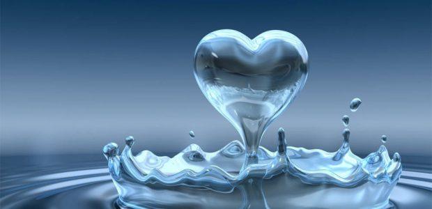 ¿Sabías que tomar agua en la hora correcta maximiza su efectividad en el cuerpo humano? Dependiendo del momentodel día, te indicamos qué cantidad es aconsejable tomar. ¡Toma nota!  2 […]