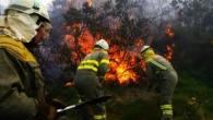 EnLa Coruña viven mirando hacia el monte, donde 750 hectáreas de bosque ya han ardido. Los tres focos del incendio hacen sospechar que pueda ser intencionado. 224 militares de UME […]