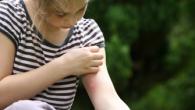 Ya queda poco para que los mosquitos empiecen a molestar nuestras horas de verano. Este año estáte preparado contra sus picaduras con unos cuantos consejos que te dejamos en Pandora. […]