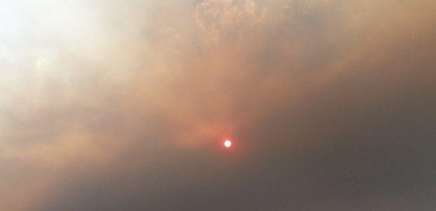 Este año está siendo trágico para León en materia de incendios. Se suceden en estos días el del Ayuntamiento en la capital leonesa, que arrasaba con la mayoría de […]