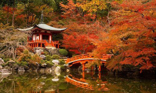 Una de las épocas más hermosas para visitar Japón –además de la primavera para contemplar los cerezos en flor- es el otoño. Durante esta estación se puede disfrutar de las […]