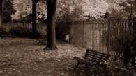 La mujer caminaba por la calle, el taconeo de sus zapatos se oía por toda la barriada, ya no era tan bella como a los veinte, ni tan […]