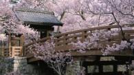 Con la llegada de la primavera y el buen tiempo, por fin se puede gozar de una de las tradiciones más hermosas y milenarias del país nipón: el hanami o […]