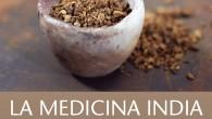 Título: La medicina india según las fuentes del Ayurveda Autor: Juan Arnau Editorial: Kairós Páginas: 240 ISBN: 978-84-9988-302-1 Precio: 15€ Puedes comprarlo aquí  Sinopsis: El ayurveda lleva […]