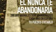 El maltrato animal y los abandonos de mascotas en España son parte del día a día. Las vacaciones, las temporadas de caza y los caprichos de las personas, entre […]