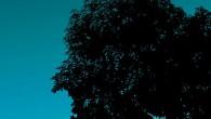 Título: Diez de Diciembre Autor: George Saunders Traductor: Ben Clark Editorial: Alfabia Páginas: 280 ISBN: 978-84-940928-6-2 Precio: 19,50€ Puedes comprarlo aquí  Sinopsis: Tras seis años de silencio, George […]