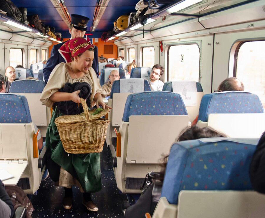 Tren-CamposdeCastilla