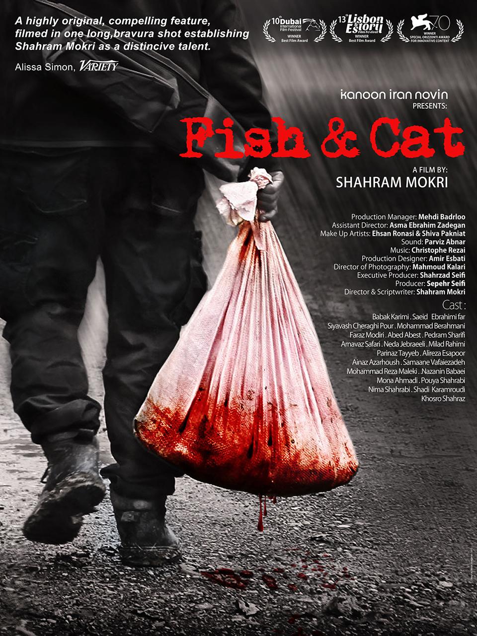 16_Fish & cat
