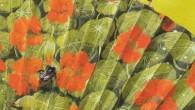 Título: Bashō, el loco de la poesía Autores: Françoise Kerisel y Frédéric Clément Editorial: Hotel Papel Ediciones Traducción: Luisa Antolín ISBN: 978-84-944382-1-9 Páginas: 60 PVP: 22€ Puedes comprarlo […]